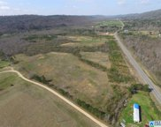 Shoal Creek Rd Unit 4 Acres, Ashville image