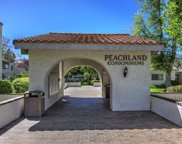 25015 Peachland Avenue Unit #248, Newhall image