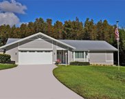 14 Cypress Run, Haines City image