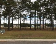 1179 Fiddlehead Way, Myrtle Beach image