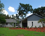 4452 Mohican Trail, Valrico image