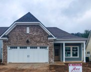 232 Mary Ann Circle, Spring Hill image