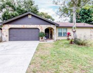 1751 Grove Drive, Clearwater image