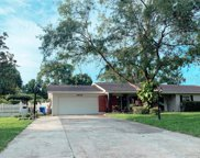 3609 Marco Drive, Tampa image