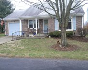 8701 Deer Point Ct, Louisville image