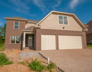 7229 RISING FAWN TRAIL, Hermitage image