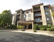 2150 Valencia Drive Unit 106, Northbrook image