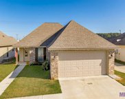 25463 Black Lake Ave, Livingston image
