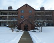 671 Hapsfield Lane Unit 207, Buffalo Grove image