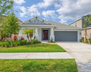8013 Marbella Creek Avenue, Tampa image