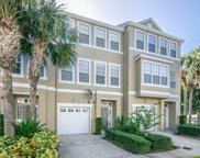 3045 Pointeview Drive, Tampa image