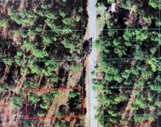 TBD Nw Narcissus Road, Dunnellon image