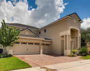 11483 Brickyard Pond Lane, Windermere image