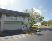 10447 Waterbird Way Unit 10447, Bradenton image
