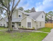 3308 Fox Lake Drive, Tampa image