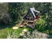 85377 PEACEFUL VALLEY  LN, Eugene image