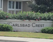 882     Buttercup Rd, Carlsbad image