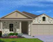 413 Fairy Duster Dr., New Braunfels image