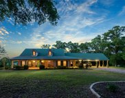 16338 County Road 46 Road, Tyler image