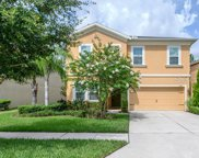 6439 Bradford Hill Court, Wesley Chapel image