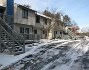 1093 Canyon Rd Unit 106, Lake Delton image