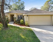 1730 Lucky Pennie Way, Apopka image