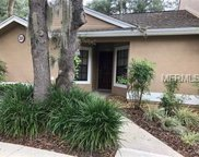 5100 Burchette Road Unit 805, Tampa image