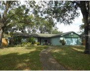 3907 Willowtree Place, Tampa image