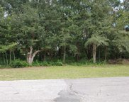 3418 W Cypress Drive, Dunnellon image