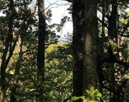 00 Mountain Lakes  Drive Unit #434, 435, 436, Tryon image