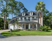 2209 GREEN HERON CT, Fleming Island image