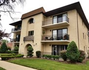 9521 South 53Rd Avenue Unit 1S, Oak Lawn image
