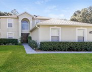 2049 Hayfield Way, Apopka image