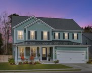 2236 Spring Hope Drive, Mount Pleasant image