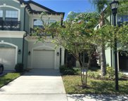 11636 Crowned Sparrow Lane, Tampa image