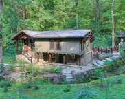 259 Black Mash Hollow Rd, Townsend image
