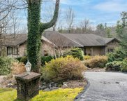 258 Red Maple  Drive, Flat Rock image