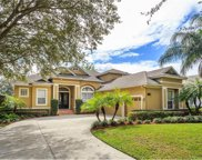 8561 Bowden Way, Windermere image