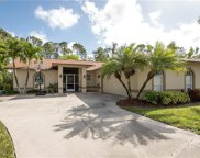 293 Willoughby Dr, Naples image
