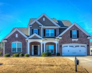 316 Scotts Bluff Drive, Simpsonville image