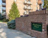 2 Birchwood  Court Unit #1M, Mineola image
