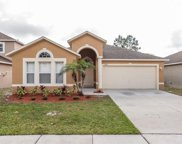 12904 Brookcrest Place, Riverview image