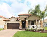 13117 Green Violet Drive, Riverview image