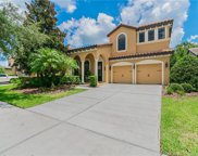 20213 Heritage Point Drive, Tampa image