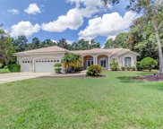 3874 Crescent Cove Place, Tarpon Springs image