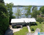 144 Mohican Dr, Pell City image