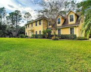 12024 Split Bark Court, Orlando image