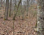 LT28 Lance Mountain Acres, Blairsville image