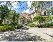 9026 Balmoral Mews Square, Windermere image