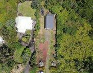 15-1065 AMAU RD, KEAAU image